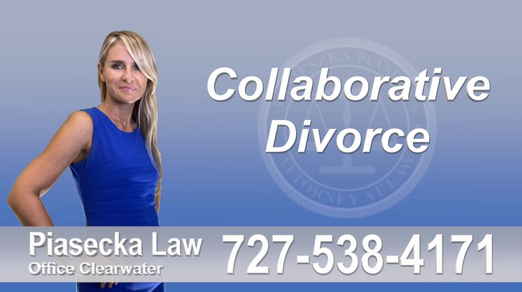 Polish Lawyer Tampa Collaborative, Attorney, Agnieszka, Piasecka, Prawnik, Rozwodowy, Rozwód, Adwokat, Najlepszy, Best Attorney, Divorce, Lawyer