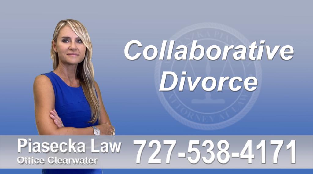 Polish Lawyer Tampa Collaborative, Divorce, Attorney, Agnieszka, Piasecka, Prawnik, Rozwodowy, Rozwód; Adwokat, Najlepszy Best