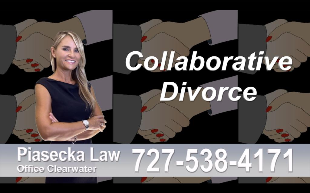 Polish Lawyer Tampa Collaborative, Divorce, Attorney, Agnieszka, Piasecka, Prawnik, Rozwodowy, Rozwód, Adwokat, Najlepszy Best