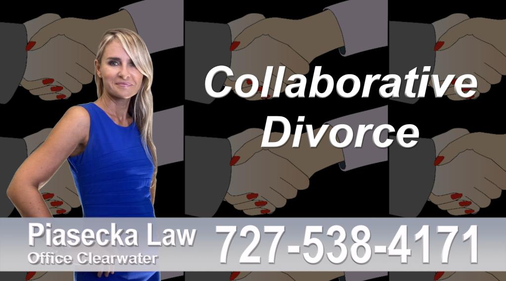 Polish Lawyer Tampa Collaborative, Divorce, Attorney, Agnieszka, Piasecka, Prawnik, Rozwodowy, Rozwód, Adwokat, Najlepszy, Best, divorce, attorney, lawyer
