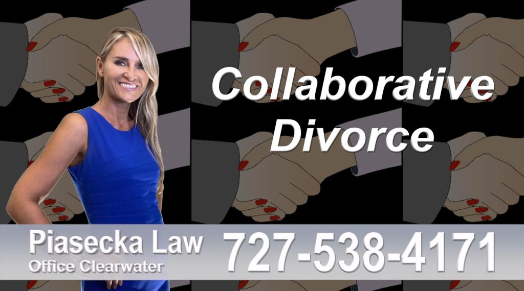 Polish Lawyer Tampa Collaborative, Divorce, Attorney, Agnieszka, Piasecka, Prawnik, Rozwodowy, Rozwód, Adwokat rozwodowy, Najlepszy Best