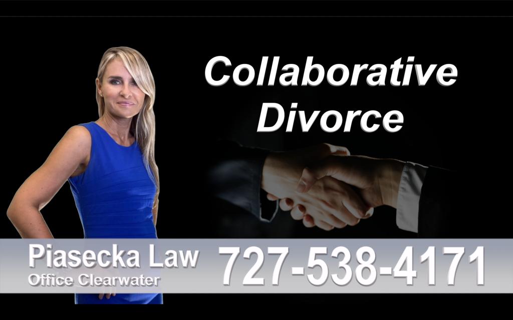 Polish Lawyer Tampa Collaborative, Divorce, Attorney, Agnieszka, Piasecka, Prawnik, Rozwodowy, Rozwód, Adwokat, rozwodowy, Najlepszy, Best, Collaborative, Divorce, Attorney