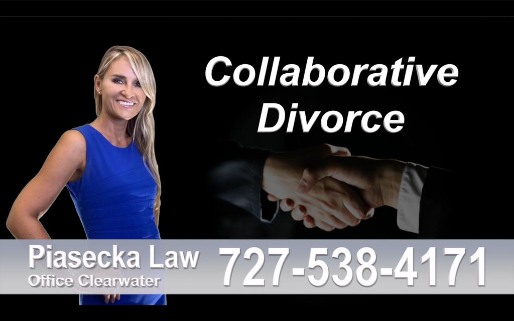 Polish Lawyer Tampa Collaborative, Divorce, Attorney, Agnieszka, Piasecka, Prawnik, Rozwodowy, Rozwód, Adwokat, rozwodowy, Najlepszy, Best, Collaborative, Divorce, Attorneys