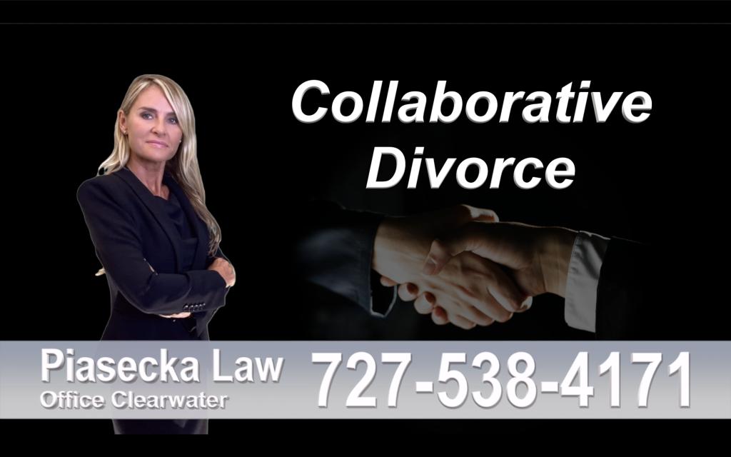 Polish Lawyer Tampa Collaborative, Divorce, Attorney, Agnieszka, Piasecka, Prawnik, Rozwodowy, Rozwód, Adwokat, rozwodowy, Najlepszy, Best, Collaborative, Divorce, Lawyers