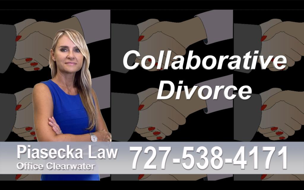 Polish Lawyer Tampa Collaborative, Divorce, Attorney, Agnieszka, Piasecka, Prawnik, Rozwodowy, Rozwód, Adwokat, rozwodowy, Najlepszy Best Lawyer
