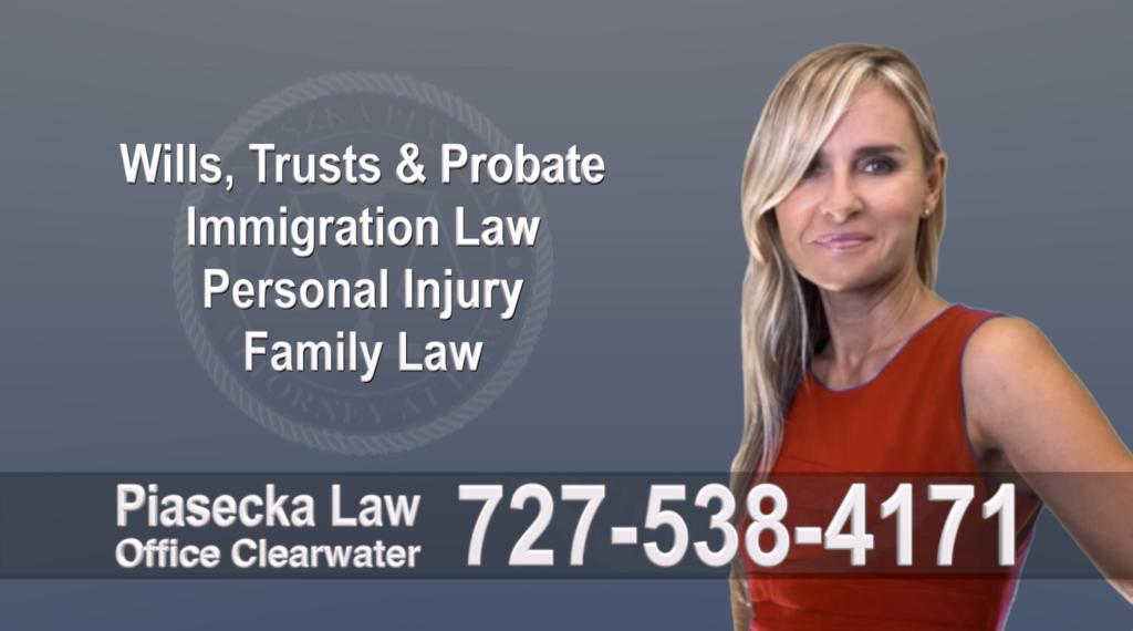 Tampa, Polish, Lawyer, Attorney, Florida, Wills, Trusts, Probate, Immigration, Personal Injury, Family Law, Agnieszka, Piasecka, Aga, Najlepszy
